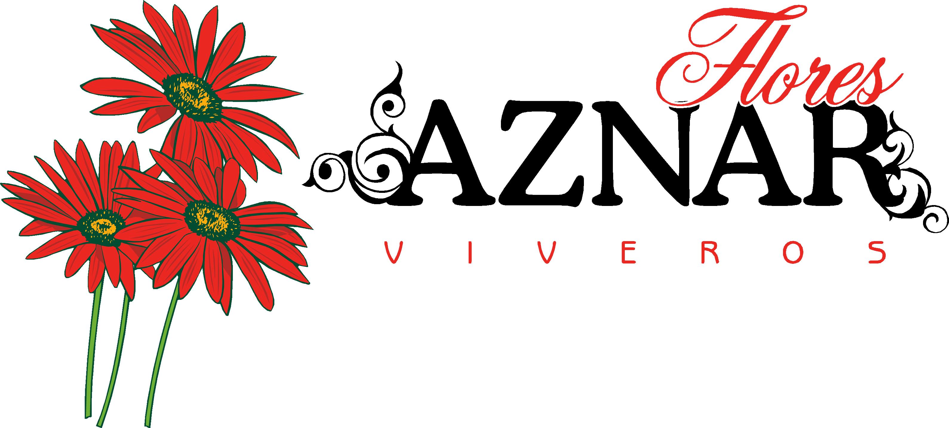 Flores aznar v certamen de jota villa de la almolda for Viveros zaragoza