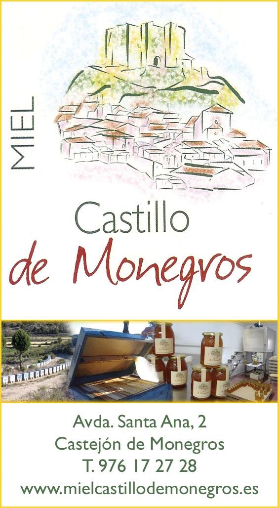 miel castillo de monegros.JPG