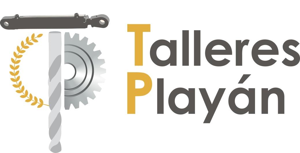 Playan logo